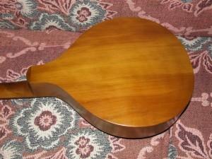 Arranjo de guitarra portuguesa (12)